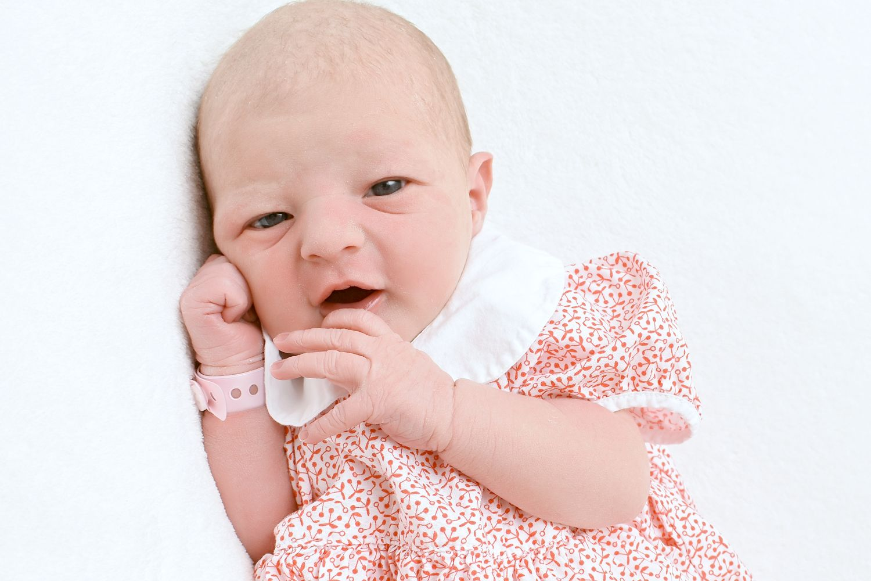 2021 elwső babája a TritonLifeban